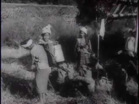 Soviet Army Hurls Back Nazis - 1943