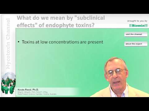 "What do we mean by ""subclinical effects"" of endophyte toxins?"