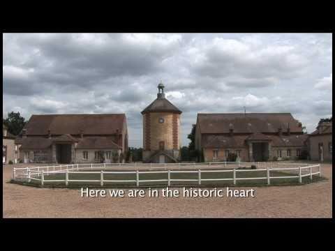 Web série - Episode 5 : A la recherche des Mérinos de Louis XVI