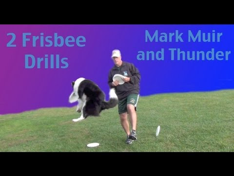 Two Disc Dog Drills- Mark Muir- Dog Training Frisbee
