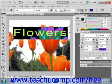 Photoshop CS5 Tutorial Using the Character Panel Adobe Training Lesson 11.7