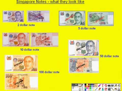 Recognising Singapore Coins and Notes