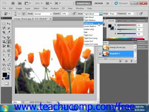 Photoshop CS5 Tutorial Using the Art History Brush Panel Adobe Training Lesson 5.9