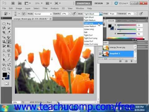 Photoshop CS5 Tutorial Using the Art History Brush Panel Adobe Training Lesson 5.9