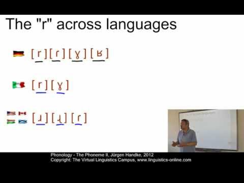 Phonology - The Phoneme II