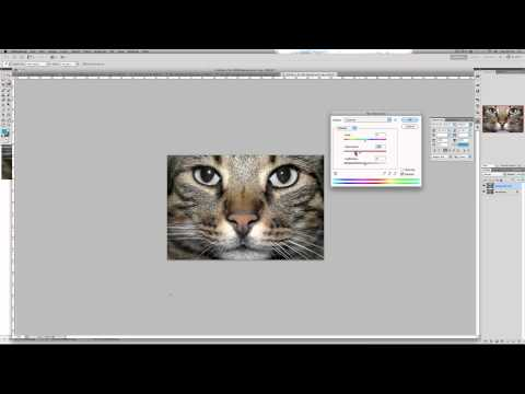 Photoshop CS5 Tutorial: How to Make your photos Deeper & Richer in Quality