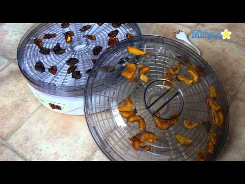 Using a Dehydrator for a Raw Food Diet