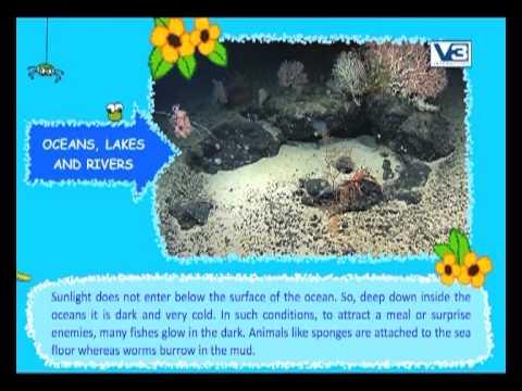 Oceans, Lakes -