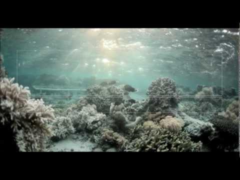 TEDxItaewon 2012 - Cesar Harada - Protei, shape-shifting sailing robot to sense and clean ocean.