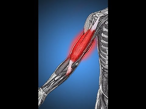 Reduce muscle pain and get rid of muscle soreness