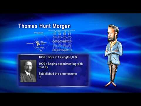 Top 100 Greatest Scientist in History For Kids(Preschool) - THOMAS HUNT MORGAN