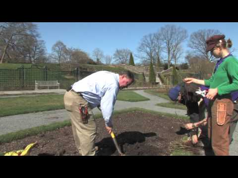 Planting Bare Root Roses with Peter Kukielski