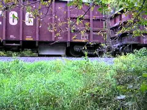 Train passing through the Minnesota woods