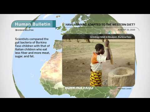 Science Bulletins: Have Humans Adapted to the Western Diet?