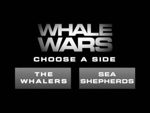 Whale Wars - Whaling Points of View