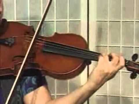 Violin Lesson - How To Play Danman's Print Library # 92