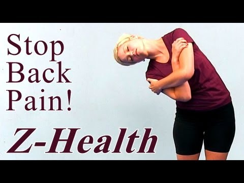 Stop Back Pain: Z Health Exercises for the Spine, Beginners Home Routine | Body Work Austin