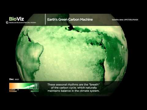 Science Bulletins: Earth's Green Carbon Machine