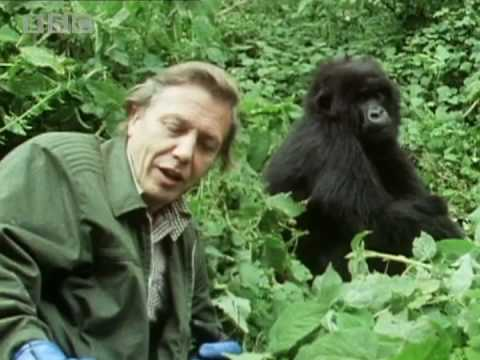 Sir David Attenborough - the story behind Life on Earth - BBC