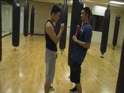 Wing Chun - Punch (body mechanics) part 3