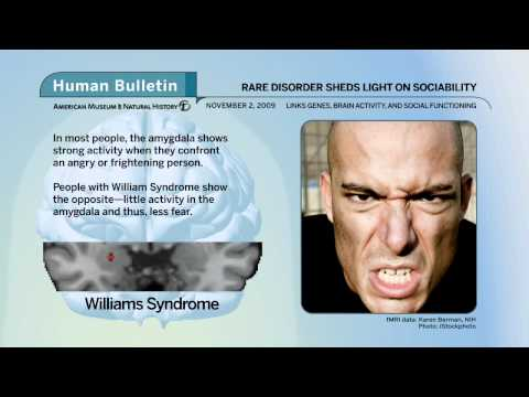 Science Bulletins: Rare Disorder Sheds Light on Sociability