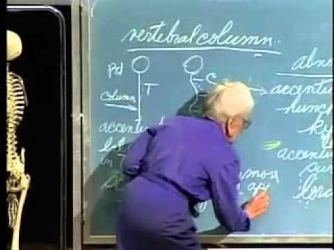 Saylor BIO302: Skeletal System Lecture 4