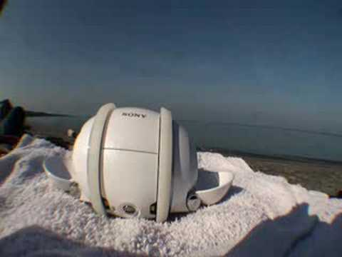 Sony Rolly by the Sea