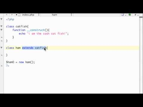 PHP Tutorial - 43 - Inheritance and Constructors