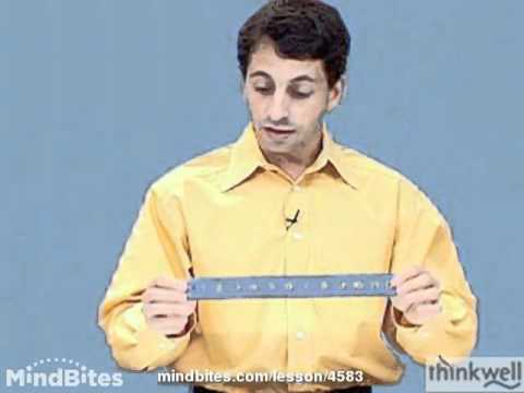 Physics: Length Contraction