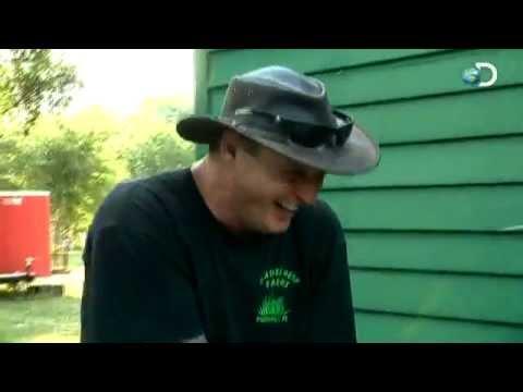Swamp Brothers - Robbie's Mischief
