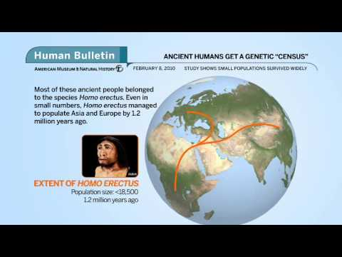 Science Bulletins: Ancient Humans Get a Genetic 'Census'