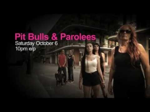 Pit Bulls & Parolees - Extended Trailer*