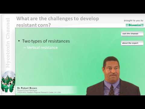 What are the challenges to developing resistant corn?