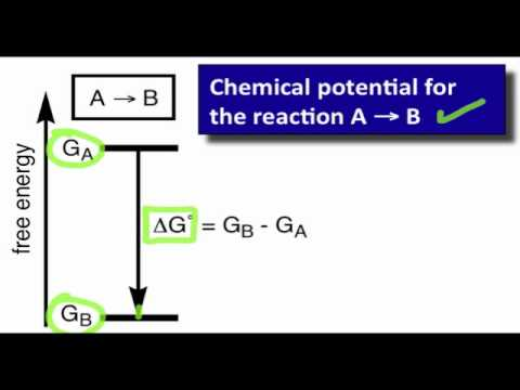 Structure-Reactivity Relationships