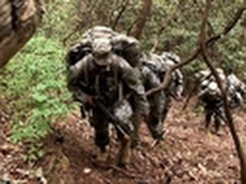 Surviving the Cut - Into the Woods | Ranger School