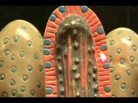 Small Intestines Histology Model - Layers & Mucosa