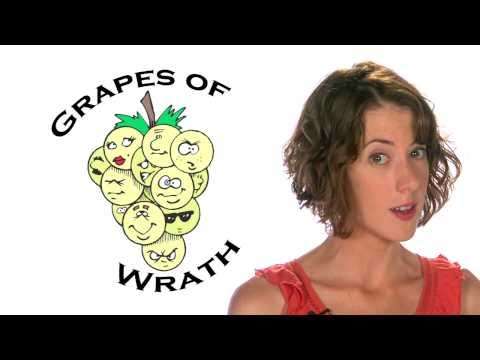 "The Grapes of Wrath SUMMARY -- Steinbeck's ""Grapes of Wrath"" ... from 60second Recap®"