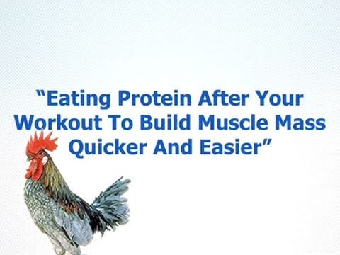 Protein After Workout: Does It Really Increase Muscle Growth?