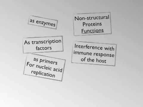 Virus Protein