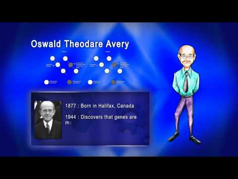 Top 100 Greatest Scientist in History For Kids(Preschool) - OSWALD THEODARE AVERY