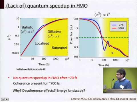 Quantum Mechanics of Photosynthetic Light Harvesting Machinery (Google Workshop on Quantum Biology)