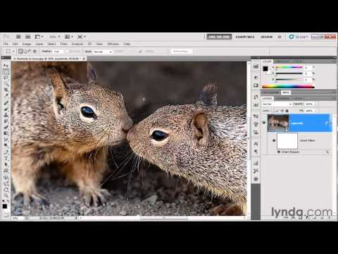 Photoshop: Using the Smart Sharpen filter | lynda.com tutorial