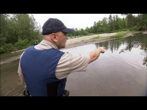 Protecting Alaska's Salmon