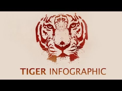 Video infographic: Endangered tigers