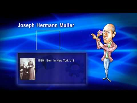 Top 100 Greatest Scientist in History For Kids(Preschool) - JOSEPH HERMANN MULLER