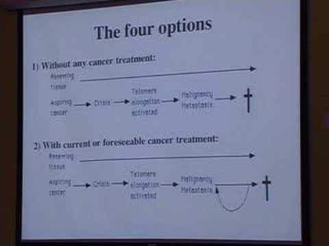 WILT: taking cancer seriously enough to really cure it