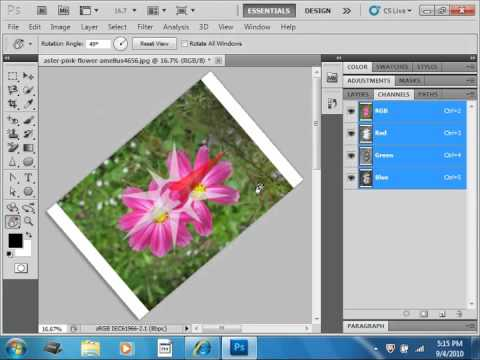Photoshop CS5 Tutorial The Rotate View Tool Adobe Training Lesson 14.3