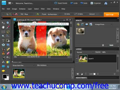 Photoshop Elements 9.0 Tutorial The Recompose Tool Adobe Training Lesson 13.13