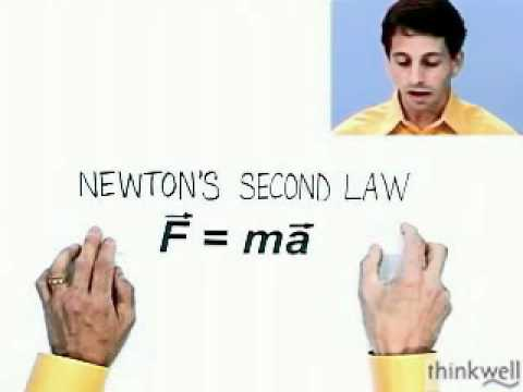 Vector Nature of Force and Newton's Second Law, Part 2 of 2, from Thinkwell's Video Physics 1 Course