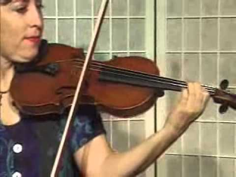 Violin Lesson - How To Play Danman's Print Library # 119